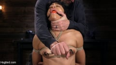 Amethyst Banks - Exotic Newbie Gets Tied and Tormented at the Hands of The Pope (Thumb 03)