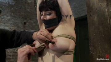 Annika - Actual member of the site applies to model and is accepted. This big titted MILF is bound and abused.