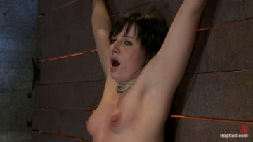 Ashli  Orion - Wrist suspension while impaled on a cock and vibrator Each brutal orgasm weakens and further impales.