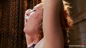 Audrey Hollander - Party Girl Gets Her Pussy Destroyed on Her Final Day