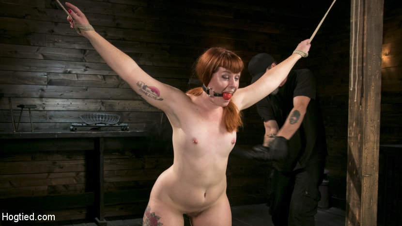 Kink 'Pain Slut in Extreme Bondage Suffers from Brutal Torment' starring Barbary Rose (photo 3)