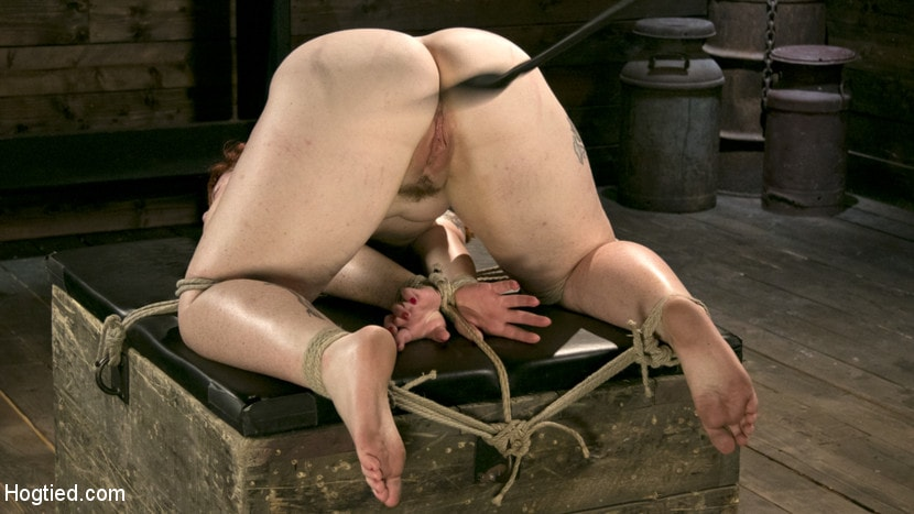 Kink 'Pain Slut in Extreme Bondage Suffers from Brutal Torment' starring Barbary Rose (photo 11)
