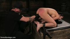 Cassandra Cain - Newbie Pain Slut Cassandra Cain Coerced with Orgasms and Metal Bondage (Thumb 08)