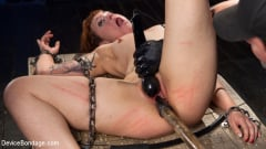 Elizabeth Thorn - Chained Pain Slut (Thumb 13)