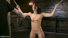 Gina Valentina - Tiny Sexual Plaything Gina Valentina Tied and Fucked in Rope Bondage! (Thumb 03)