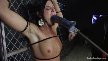 India Summer - Two in a cage is worth more than one with a shaved bush. -Countdown to Relaunch - 6 of 20