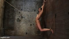 Isis Love - Brutalize her with a massive dose of tickling. Boy does she hate every second! C5 suspension (Thumb 04)