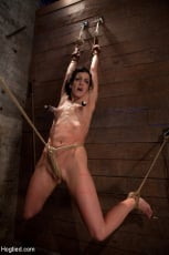 Isis Love - Brutalize her with a massive dose of tickling. Boy does she hate every second! C5 suspension (Thumb 08)