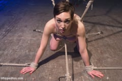 Lily LaBeau - Suffering and Orgasms (Thumb 06)