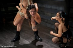 Lyla Storm - Slave Training of Lyla Storm Day 4-Sexual Obedience (Thumb 05)