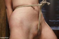 Marica Hase - Japanese Rope Slut (Thumb 03)