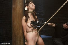 Marica Hase - Japanese Rope Slut (Thumb 07)