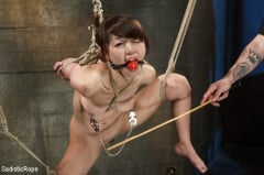 Marica Hase - Japanese Rope Slut (Thumb 13)