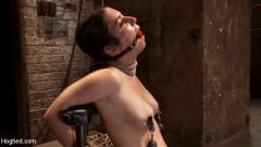 Serena Blair - Local girl next door bound up tight and helpless, flogged, nipple clamped, made to suck cock, and cum! (Thumb 12)