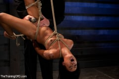 Skin Diamond - Skin Diamond Day Two Slave Ransom (Thumb 01)