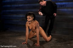 Skin Diamond - Skin Diamond Day Two Slave Ransom (Thumb 15)