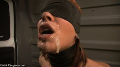 Dana DeArmond - Dana DeArmond: Attention Whore (Thumb 01)