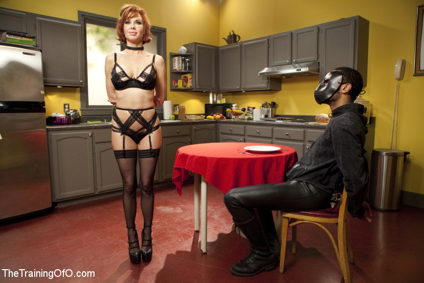 Kink 'The Training of a Nympho Anal MILF, Final Day' starring Veronica Avluv (photo 17)