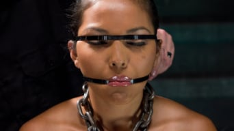 Adrianna Luna in 'Training Adrianna Luna - Day 3'