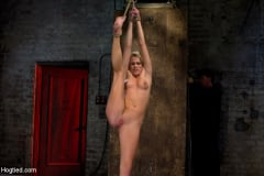 Aiden Aspen - Southern Belle in her first hardcore bondage experience Abused, made to cum, and wrist suspended. (Thumb 06)