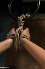 Aiden Aspen - Southern Belle in her first hardcore bondage experience Abused, made to cum, and wrist suspended. (Thumb 08)