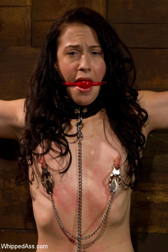 Kink 'First time fisting, check. First anal orgasm, check.' starring Aiden Starr (Photo 2)