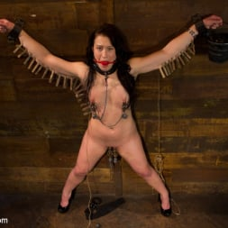 Aiden Starr in 'Kink' First time fisting, check. First anal orgasm, check. (Thumbnail 8)