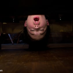 Aiden Starr in 'Kink' First time fisting, check. First anal orgasm, check. (Thumbnail 9)