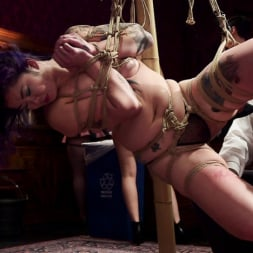 Aiden Starr in 'Kink' Holiday BDSM Slut Orgy turns Fangirl to Sex Slave (Thumbnail 3)