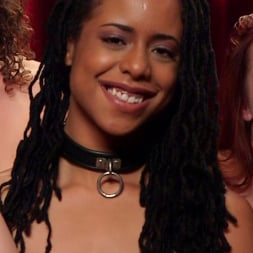 Aiden Starr in 'Kink' Slave Orgy Unchained (Thumbnail 4)