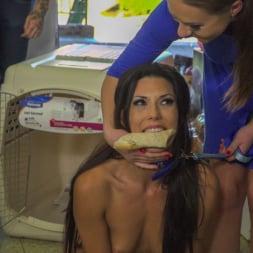 Alexa Tomas in 'Kink' Slutty Pet Begs for a Bone!!! - Part 2 (Thumbnail 4)