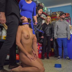 Alexa Tomas in 'Kink' Slutty Pet Begs for a Bone!!! - Part 2 (Thumbnail 6)