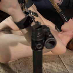 Amarna Miller in 'Kink' Used and Left Behind (Thumbnail 11)