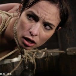 Amber Rayne in 'Kink' Amber Rayne (Thumbnail 5)