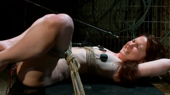 AnnaBelle Lee in 'Heavy Electro BDSM Assplay'