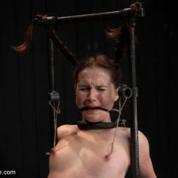 AnnaBelle Lee in 'Kink' Pig (Thumbnail 4)