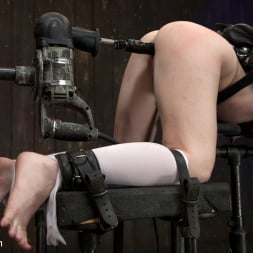 AnnaBelle Lee in 'Kink' Pig (Thumbnail 12)