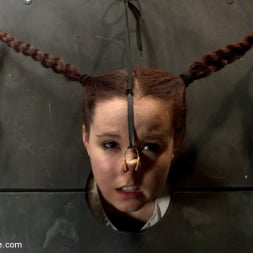 AnnaBelle Lee in 'Kink' Pig (Thumbnail 15)