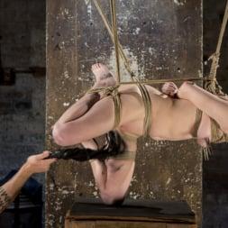 Anna Tyler に 'Kink' サスペンション・スラットアンナ・タイラー、オーガズムを撃つのに屈する (サムネイル 20)