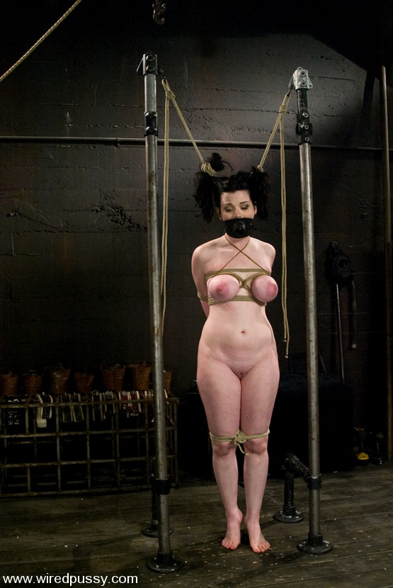 Kink 'Sybil' starring Annette Schwarz (Photo 5)