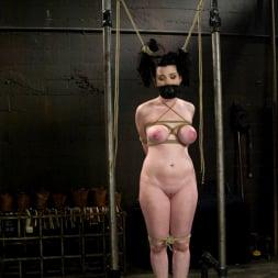 Annette Schwarz in 'Kink' Sybil (Thumbnail 5)