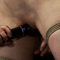 Annika in 'Kink' Actual member of the site applies to model and is accepted. This big titted MILF is bound and abused. (Thumbnail 3)