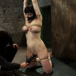 Annika in 'Kink' Actual member of the site applies to model and is accepted. This big titted MILF is bound and abused. (Thumbnail 4)