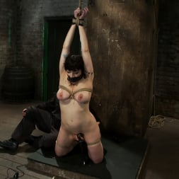 Annika in 'Kink' Actual member of the site applies to model and is accepted. This big titted MILF is bound and abused. (Thumbnail 5)