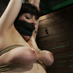 Annika in 'Kink' Actual member of the site applies to model and is accepted. This big titted MILF is bound and abused. (Thumbnail 6)