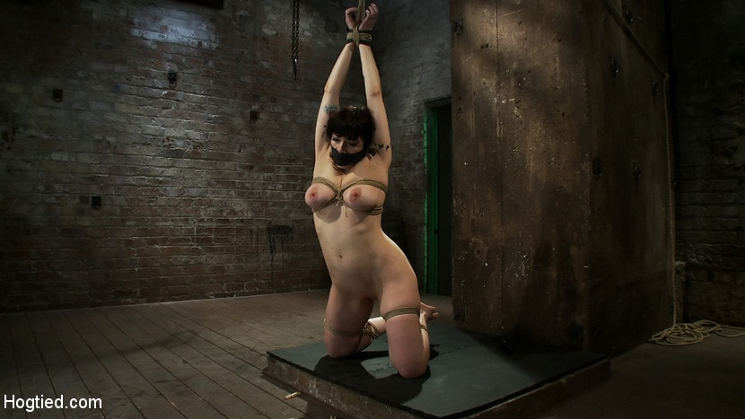 Kink 'Actual member of the site applies to model and is accepted. This big titted MILF is bound and abused.' starring Annika (Photo 7)