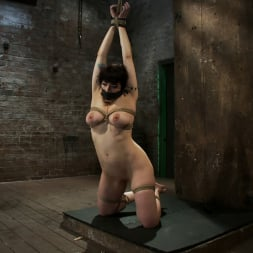 Annika in 'Kink' Actual member of the site applies to model and is accepted. This big titted MILF is bound and abused. (Thumbnail 7)
