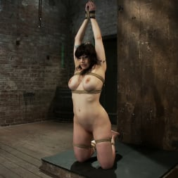 Annika in 'Kink' Actual member of the site applies to model and is accepted. This big titted MILF is bound and abused. (Thumbnail 9)