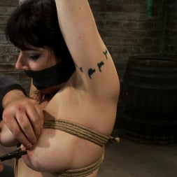 Annika in 'Kink' Actual member of the site applies to model and is accepted. This big titted MILF is bound and abused. (Thumbnail 13)