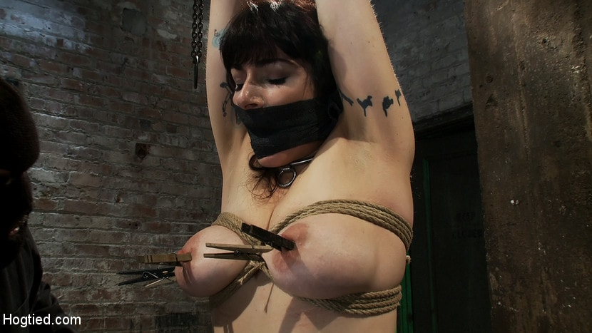 Kink 'Actual member of the site applies to model and is accepted. This big titted MILF is bound and abused.' starring Annika (Photo 14)
